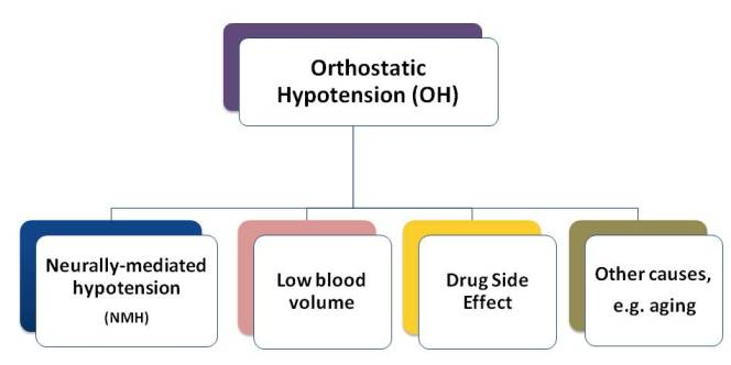 orthostatic hypotension (oh) -nmh, Skeleton